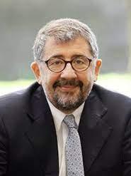 Mario Cimoli